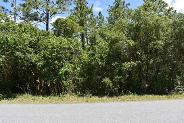 3922 N Longvalley Road, Hernando, FL 34442 (MLS #OM619145) :: Your Florida House Team