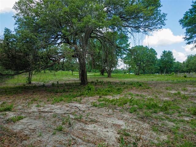 180 SE 165TH COURT Road, Silver Springs, FL 34488 (MLS #OM619190) :: Realty Executives in The Villages