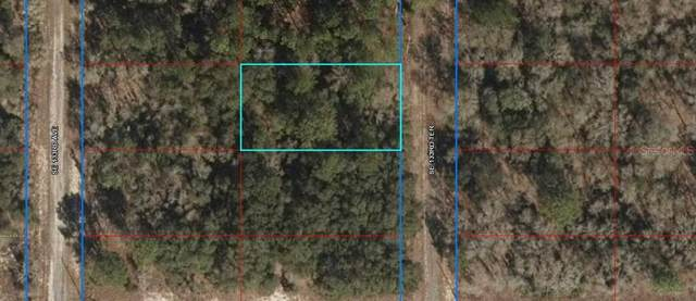 Lot 31 SE 133 Terrace, Dunnellon, FL 34431 (MLS #OM619264) :: The Heidi Schrock Team