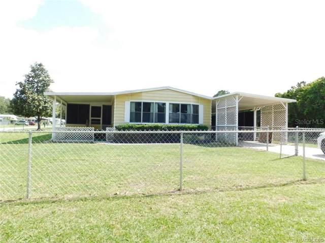 1356 N Arkansas Terrace, Hernando, FL 34442 (MLS #OM619367) :: Bustamante Real Estate