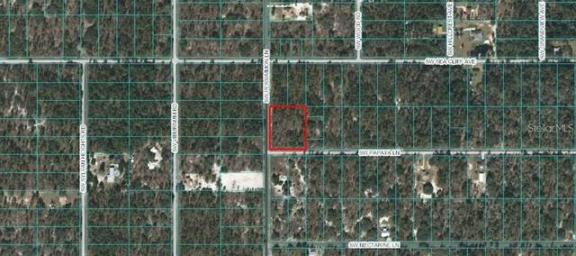 00 SW Papaya Lane, Dunnellon, FL 34431 (MLS #OM619371) :: Armel Real Estate