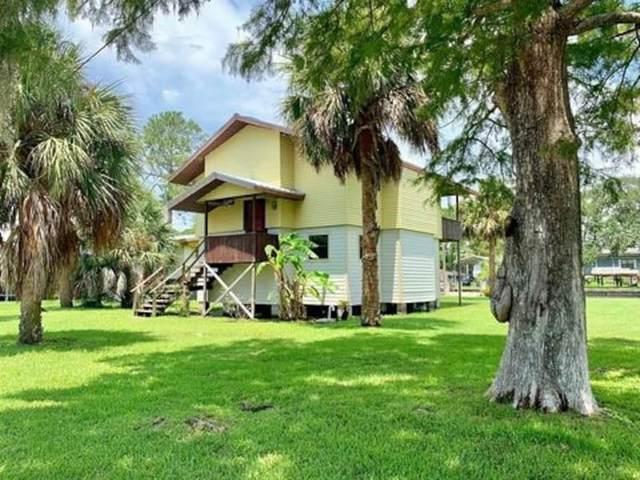 20 SE 894TH Avenue, Old Town, FL 32680 (MLS #OM619485) :: Everlane Realty