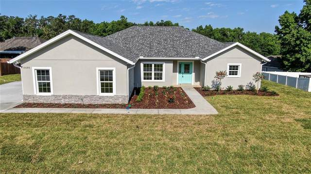 10080 SE 42ND Court, Belleview, FL 34420 (MLS #OM619536) :: The Heidi Schrock Team