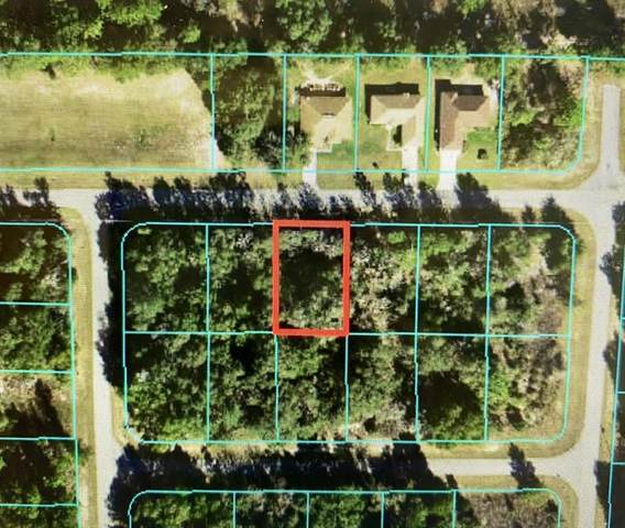 TBD SW 128TH Loop, Ocala, FL 34473 (MLS #OM619583) :: Southern Associates Realty LLC