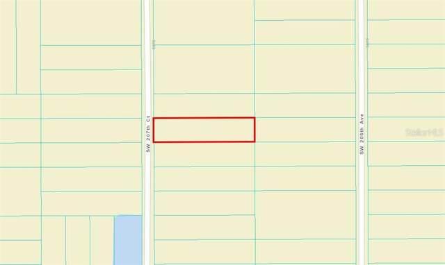 TBD SW 207TH Court, Dunnellon, FL 34432 (MLS #OM619600) :: Armel Real Estate
