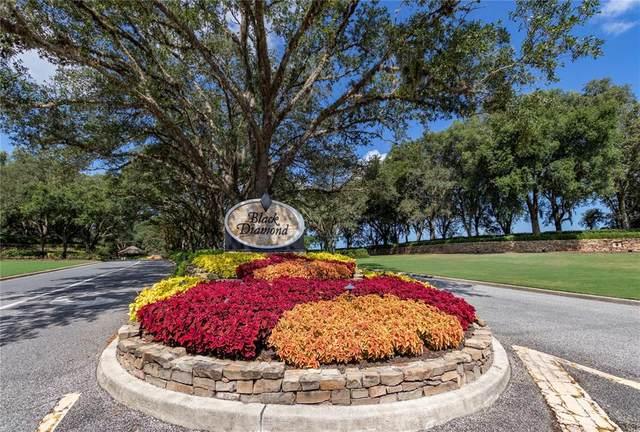 3615 N Grayhawk Loop, Lecanto, FL 34461 (MLS #OM619618) :: Armel Real Estate