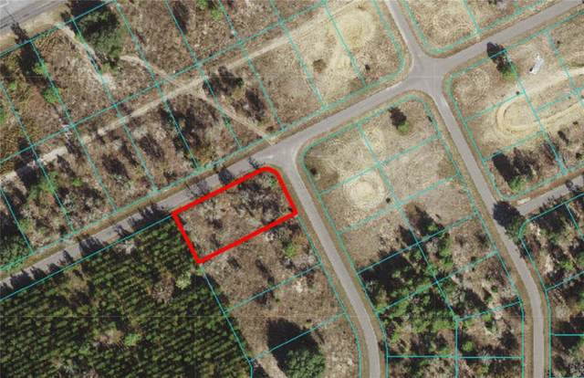 TBD Fisher Ln Trail, Ocklawaha, FL 32179 (MLS #OM619619) :: Rabell Realty Group