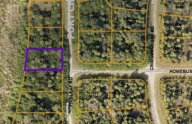 TBD Fiveleaf Road, North Port, FL 34288 (MLS #OM619642) :: The Kardosh Team