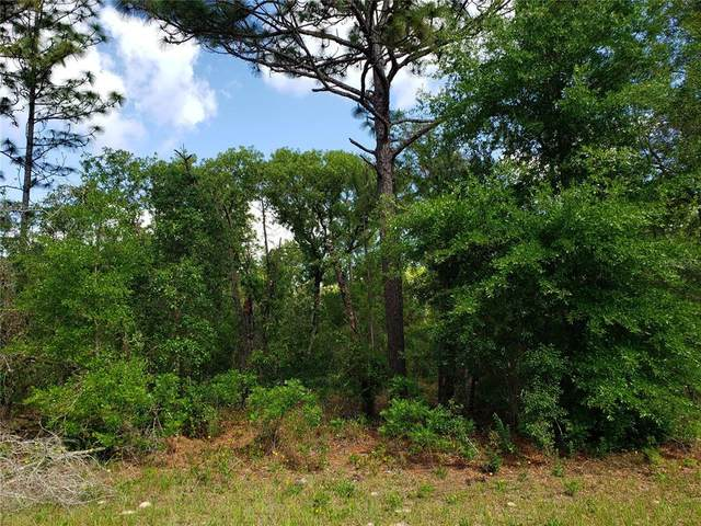 0 E Country Club Drive, Williston, FL 32696 (MLS #OM619651) :: Realty Executives in The Villages