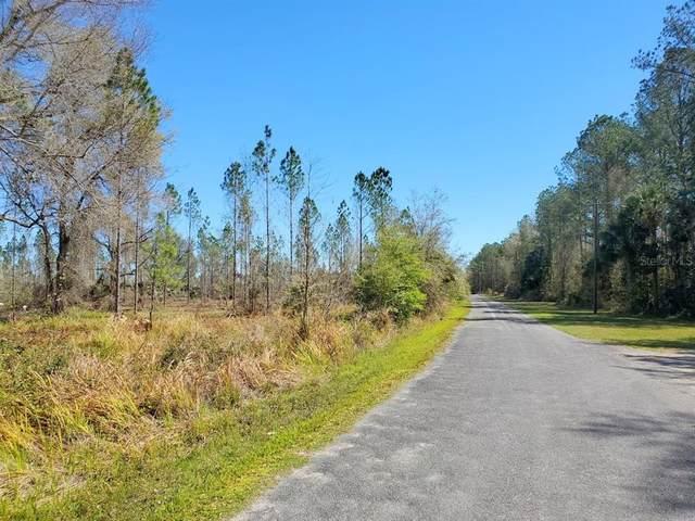 14ac NE 110 ST, Fort Mc Coy, FL 32134 (MLS #OM619662) :: Armel Real Estate
