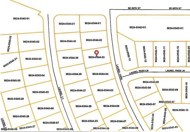 10 Laurel Course, Ocala, FL 34480 (MLS #OM619664) :: Cartwright Realty