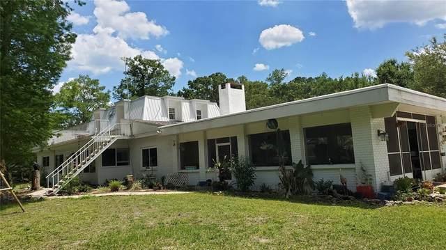 7549 North Curls Point, Hernando, FL 34442 (MLS #OM619667) :: Your Florida House Team
