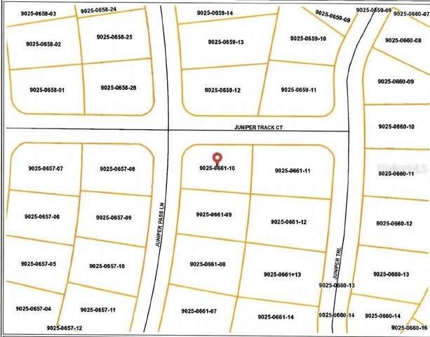 31 Juniper Pass Lane, Ocala, FL 34480 (MLS #OM619702) :: Zarghami Group