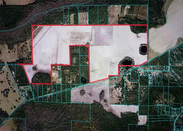 0 E 318 Highway, Citra, FL 32113 (MLS #OM619735) :: Positive Edge Real Estate