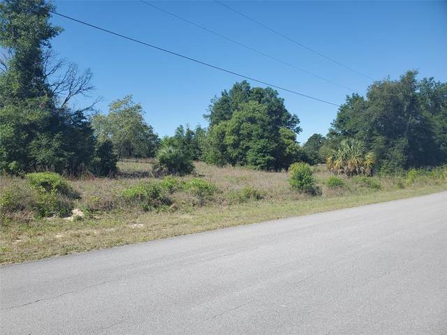 Sw Zinnia Court, Dunnellon, FL 34431 (MLS #OM619740) :: Armel Real Estate