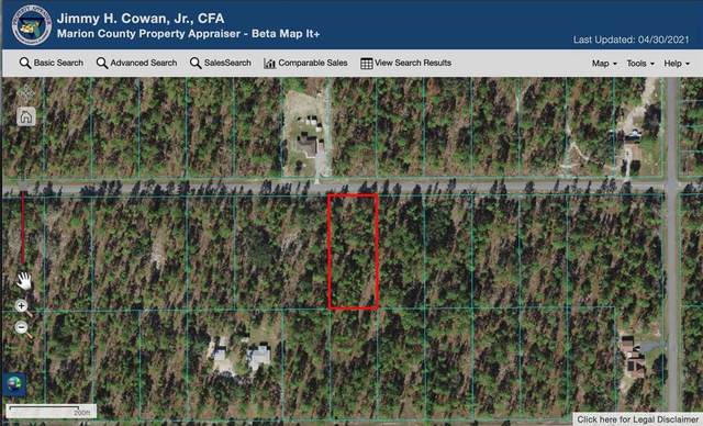 NW Amberjack Avenue, Dunnellon, FL 34431 (MLS #OM619755) :: The Heidi Schrock Team
