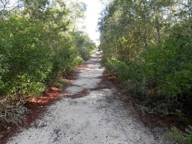 0 Ne 156Th Ave, Fort Mc Coy, FL 32134 (MLS #OM619779) :: Bridge Realty Group