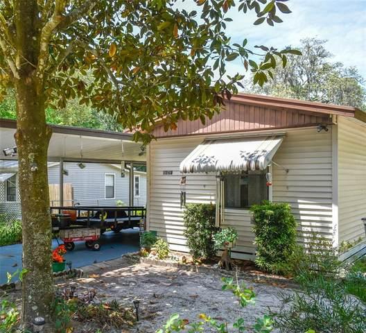 6421 W Flanders Lane, Crystal River, FL 34429 (MLS #OM619789) :: Bustamante Real Estate