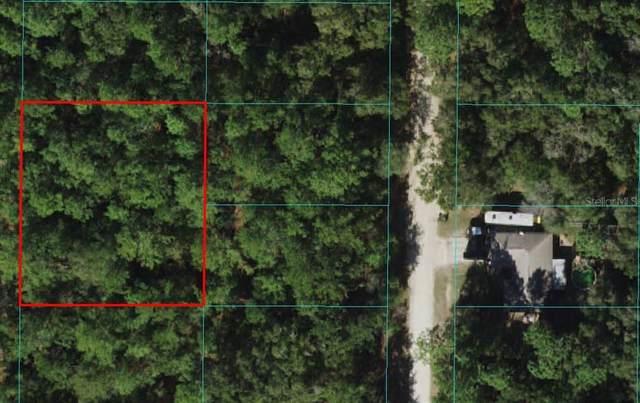4135 SW 156TH Avenue, Ocala, FL 34481 (MLS #OM619816) :: Premium Properties Real Estate Services
