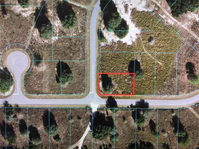 0 Locust Loop Cir, Ocala, FL 34472 (MLS #OM619856) :: Bustamante Real Estate