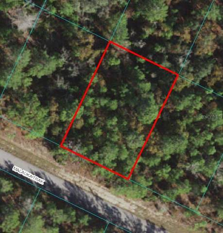 Lot 4 Malauka Track, Ocklawaha, FL 32179 (MLS #OM619858) :: Armel Real Estate