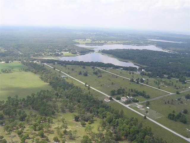 tbd SW Tiger Lake Boulevard, Dunnellon, FL 34431 (MLS #OM619868) :: The Heidi Schrock Team