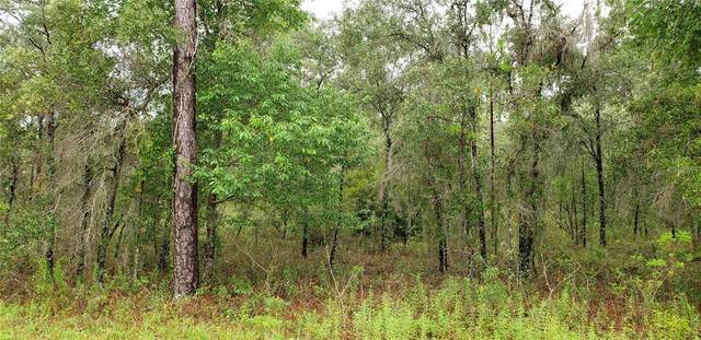 Lot 4 NE Alt Hwy 27, Williston, FL 32696 (MLS #OM619881) :: Globalwide Realty
