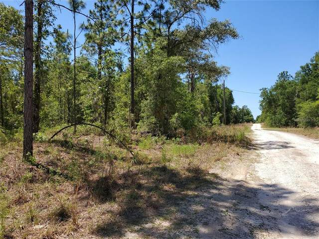 tbd NE 155TH Terrace, Williston, FL 32696 (MLS #OM619902) :: CGY Realty