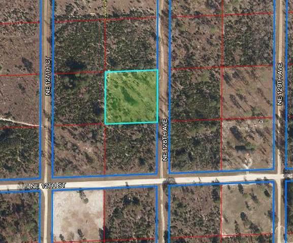 1290 NE 128TH Avenue, Williston, FL 32696 (MLS #OM619921) :: Armel Real Estate