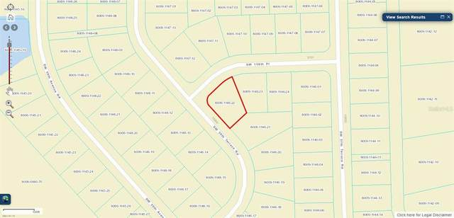 Marion Oaks, Ocala, FL 34473 (MLS #OM619952) :: The Lersch Group