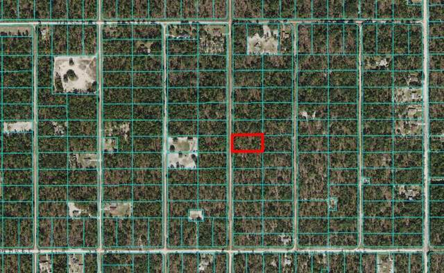 00 SW 125TH CT Road, Dunnellon, FL 34432 (MLS #OM619976) :: MVP Realty