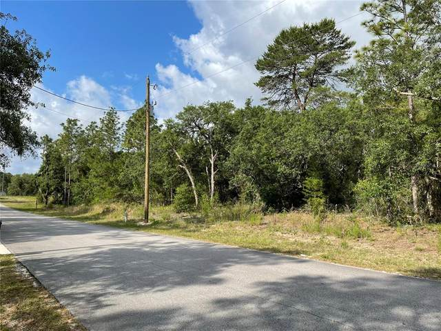 0 SW 176TH Avenue, Dunnellon, FL 34432 (MLS #OM619985) :: Kelli and Audrey at RE/MAX Tropical Sands
