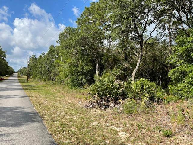 0 SW 176TH Avenue, Dunnellon, FL 34432 (MLS #OM619992) :: Kelli and Audrey at RE/MAX Tropical Sands