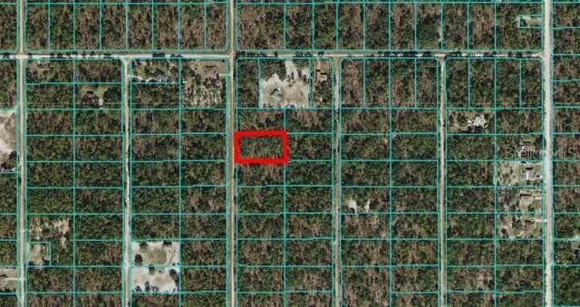 TBD SW 125TH CT Road, Dunnellon, FL 34432 (MLS #OM619993) :: MVP Realty