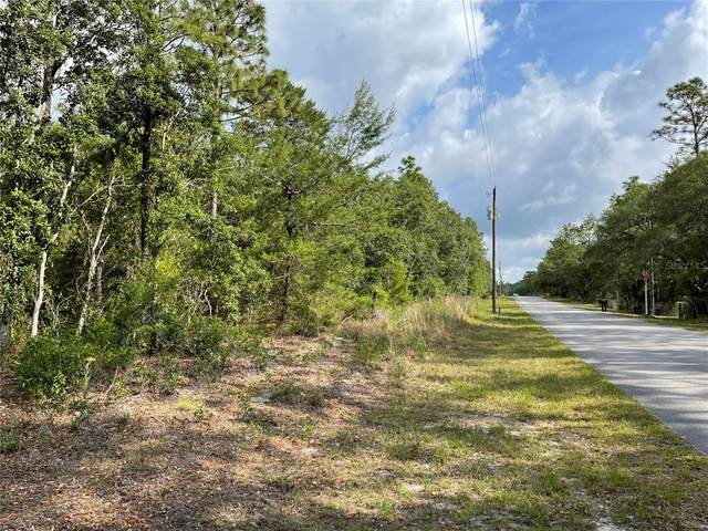 0 SW 176TH Avenue, Dunnellon, FL 34432 (MLS #OM619995) :: Kelli and Audrey at RE/MAX Tropical Sands