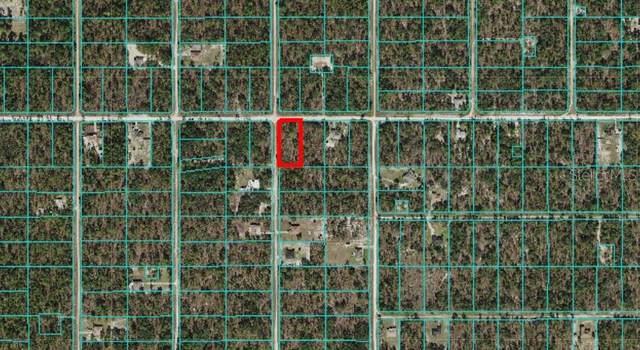 TBD SW 125TH Terrace, Dunnellon, FL 34432 (MLS #OM619997) :: MVP Realty