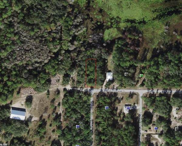 TBD SW Shorewood Drive, Dunnellon, FL 34432 (MLS #OM619999) :: The Paxton Group