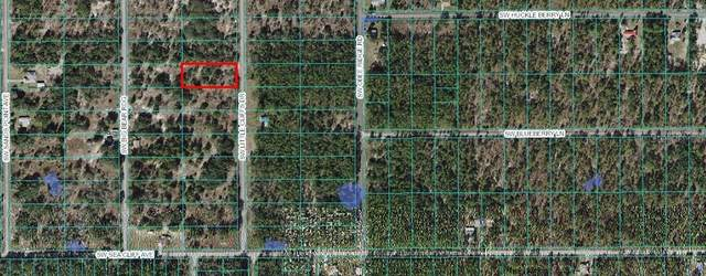 TBD Little Cliffs Drive, Dunnellon, FL 34431 (MLS #OM620002) :: Kelli and Audrey at RE/MAX Tropical Sands