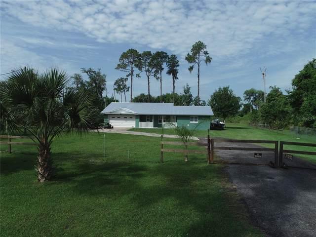 8908 NE 310TH Avenue, Salt Springs, FL 32134 (MLS #OM620022) :: New Home Partners