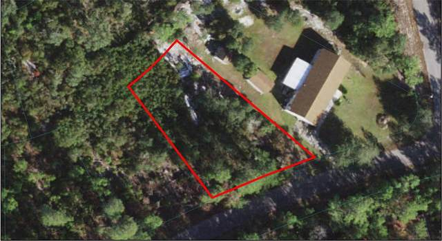 Fisher Court, Ocklawaha, FL 32179 (MLS #OM620097) :: CGY Realty