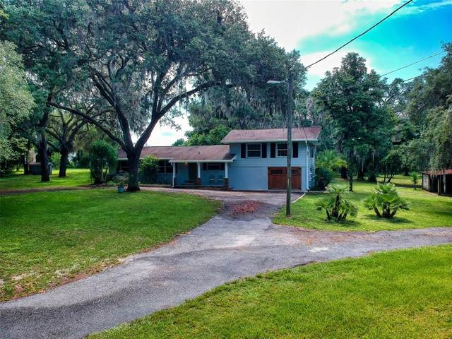 12644 County Road 44, Grand Island, FL 32735 (MLS #OM620104) :: Your Florida House Team