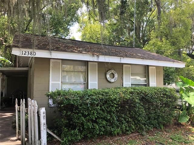 12380 SE 135TH Avenue, Ocklawaha, FL 32179 (MLS #OM620105) :: Your Florida House Team