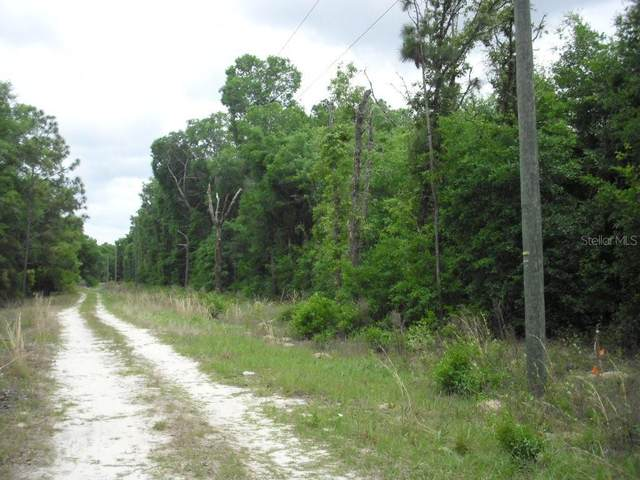 Lots 28-33 NW 16 Place, Ocala, FL 34482 (MLS #OM620123) :: RE/MAX Elite Realty