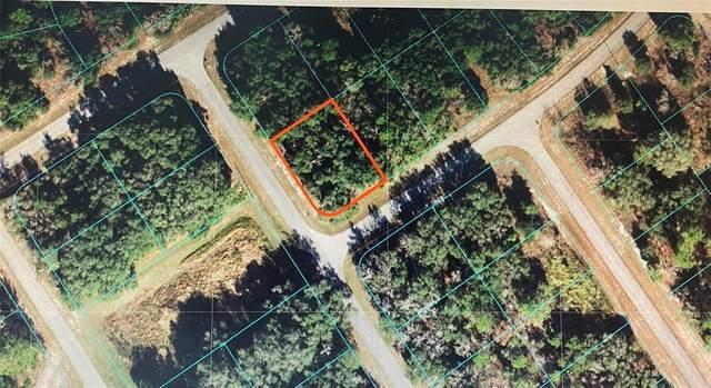 TBA SW 144 STREET Road, Ocala, FL 34473 (MLS #OM620181) :: The Robertson Real Estate Group