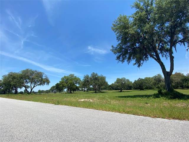 000 Ne 111Th Lane Rd, Anthony, FL 32617 (MLS #OM620188) :: Sarasota Property Group at NextHome Excellence