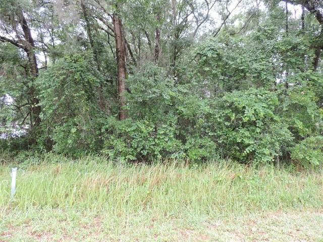 SW 189 Circle, Dunnellon, FL 34431 (MLS #OM620196) :: Armel Real Estate