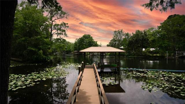 20884 River Drive, Dunnellon, FL 34431 (MLS #OM620201) :: Carmena and Associates Realty Group