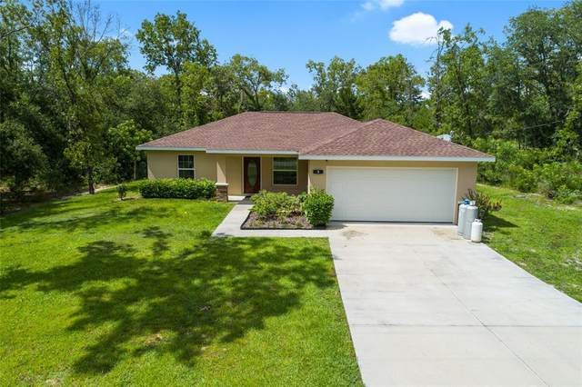3 Guava Place Pass, Ocklawaha, FL 32179 (MLS #OM620211) :: Your Florida House Team