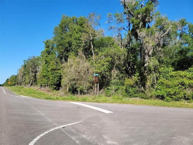 State Rd 24, Archer, FL 32618 (MLS #OM620218) :: BuySellLiveFlorida.com