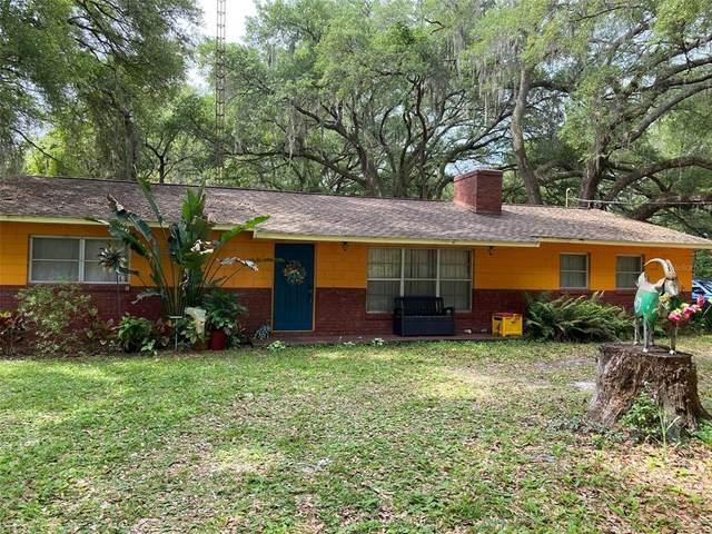 990 SE 170TH Street, Summerfield, FL 34491 (MLS #OM620231) :: The Lersch Group